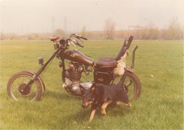 Same bike, same field .. . . . but with added dog.